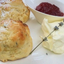 https://thepaddingtonfoodie.com/2012/11/01/afternoon-tea-lavender-scones-at-lavandula-swiss-italian-farm/