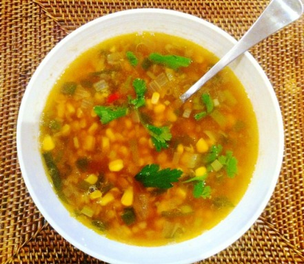 https://thepaddingtonfoodie.com/2012/11/14/spicy-corn-and-ginger-soup-with-chillies-shallots-and-home-made-chicken-stock/