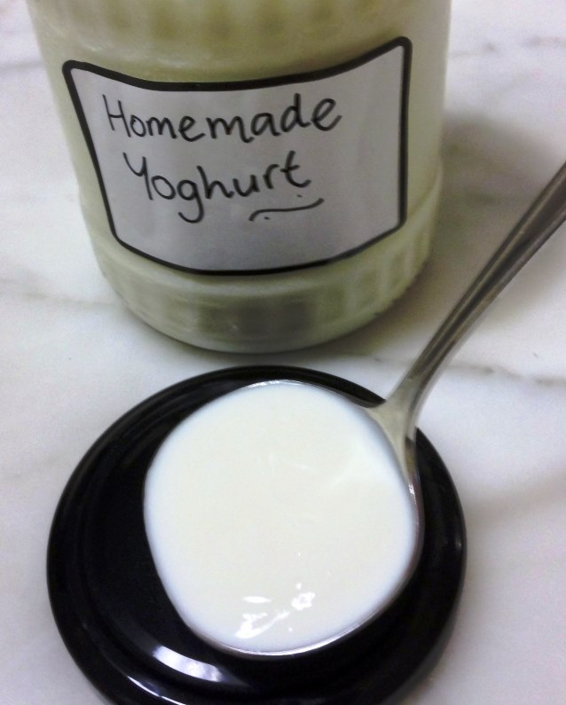 Home Made Yoghurt