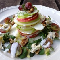 https://thepaddingtonfoodie.com/2013/08/30/the-5-2-challenge-a-feast-for-your-eyes-deconstructed-and-stacked-waldorf-salad-with-a-lemon-and-honey-yoghurt-dressing/