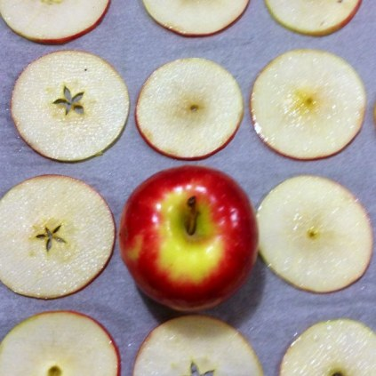 Oven Baked Apple Slices Prep
