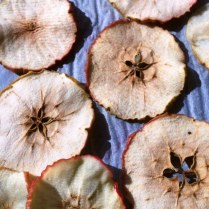 Oven Baked Apple Slices