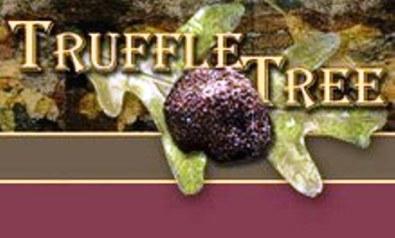 Truffle Tree Le Gers France