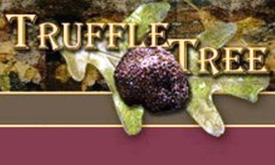 Truffle Tree Le Gers France