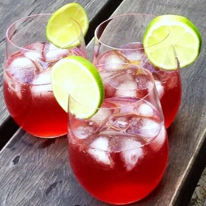 https://thepaddingtonfoodie.com/2013/12/02/eat-fast-and-live-longer-surviving-the-christmas-party-circuit-on-the-5-2-fast-diet-choose-drinks-wisely-cranberry-vodka-on-ice/