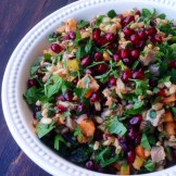 https://thepaddingtonfoodie.com/2014/01/31/eat-fast-and-live-longer-a-5-2-recipe-idea-under-300-calories-lamb-shank-sweet-potato-and-barley-salad-with-pomegranate-and-fresh-herbs/