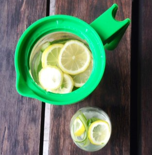 https://thepaddingtonfoodie.com/2014/06/02/eat-fast-and-live-longer-a-5-2-fast-day-idea-under-100-calories-lemon-mint-and-cucumber-infusion-with-apple-cider-vinegar/