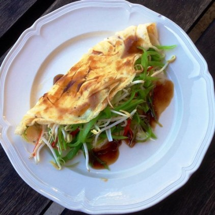 https://thepaddingtonfoodie.com/2014/09/01/eat-fast-and-live-longer-a-5-2-fast-diet-recipe-idea-under-300-calories-chinese-style-egg-omelette/