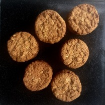 Little Anzacs