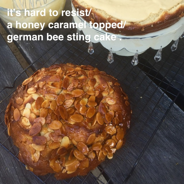 German Bee Sting Cake